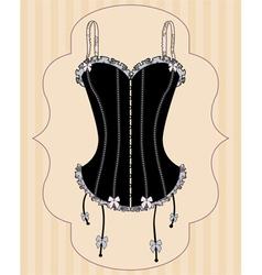 sexy vintage corset vector image