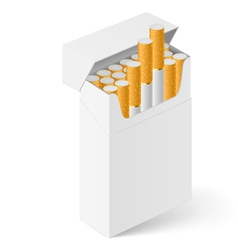 White Pack of cigarettes vector image