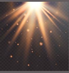 realistic sun flare starburst transparent vector image