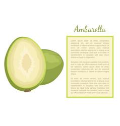 Ambarella exotic juicy fruit poster text vector