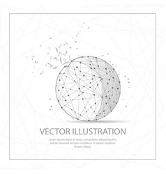 ball shape digitally drawn low poly wire frame on vector image