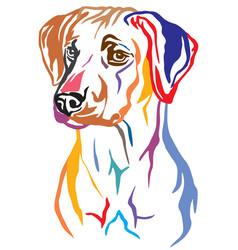 Colorful decorative portrait of rhodesian vector