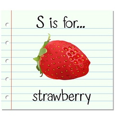 Flashcard letter S is for strawberry vector image