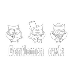 funny owls gentlemen set on isolated background vector image