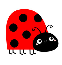 lady bug ladybird insect icon side view cute vector image
