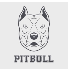 Pitbull head mascot vector