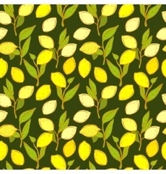 Seamless pattern with lemons background vector