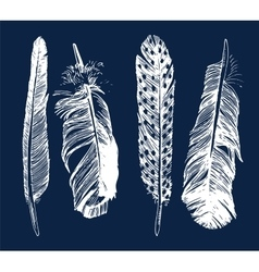 Hand drawn feathers set vector image vector image