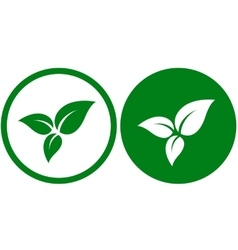 icon with green leaves vector image vector image