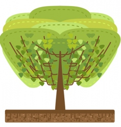 stylized tree illustration vector image