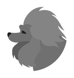 Pedigree dog head poodle vector image vector image