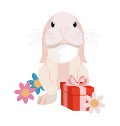 bunny gift box happy easter vector image