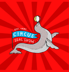 Circus funny seal badge performance with a ball vector