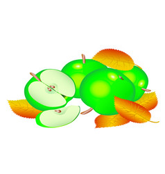 Green apples vector