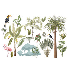 jungle animals flowers and trees isolated vector image