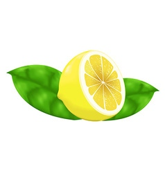 Lemon gradient mesh vector