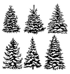 set christmas trees collection black and vector image