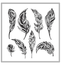 Set of black decorative feathers on a white vector image