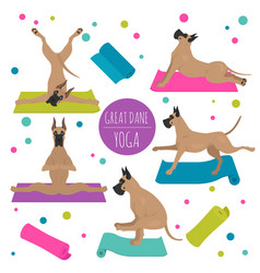 Yoga dogs poses and exercises great dane clipart vector