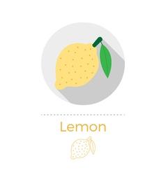 Lemon with a leaf vector image