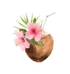 Beautiful watercolor tropical coconut stock vector