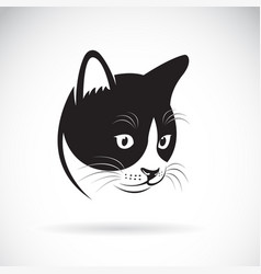 cat head design on white background pet vector image