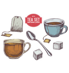 collection of hand drawn tea stuff vector image