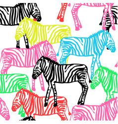 Colorful baby zebras vector
