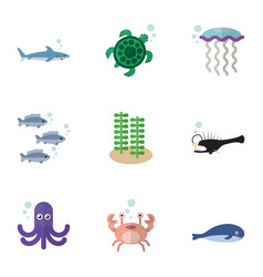 Flat icon sea set of cachalot cancer tortoise vector