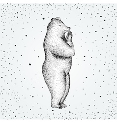 Fun a bear isolated on vector