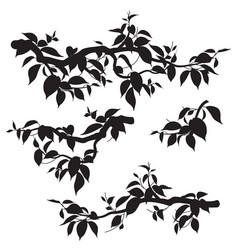 set tree branches with leaves silhouette vector image