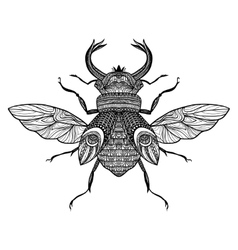Sketch Decorative Bug vector