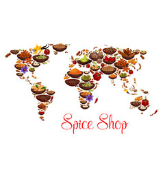 spices and herbs on world map vector image