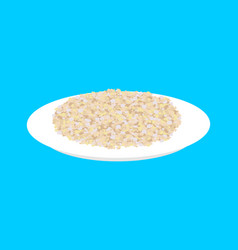 barley cereal in plate isolated healthy food for vector image