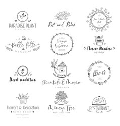 bloom nature elements vector image