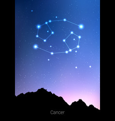canser zodiac constellations sign with forest vector image