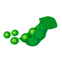 Colorful of green peas vector