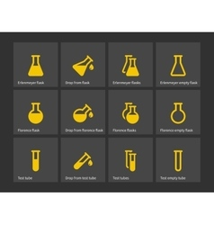 Florence and erlenmeyer flasks icons vector