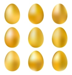 Golden eggs set vector image
