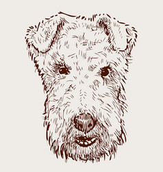 Head airedale terrier vector