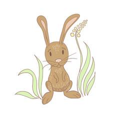sitting rabbit near a flower vector image