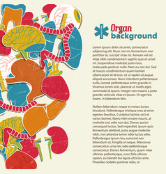 flat organ background vector image