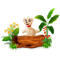 cute baby dog posing on tree trunk vector image