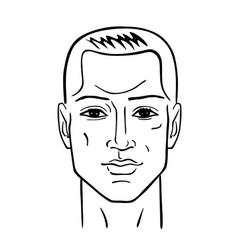 Man hairstyle head vector