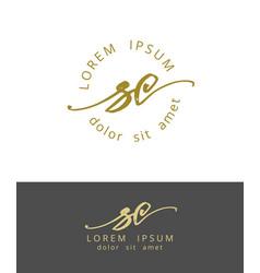 s c handdrawn brush monogram calligraphy logo vector image