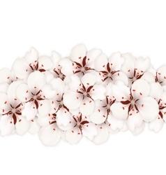 Sakura Flowers Floral Banner for Springtime vector image