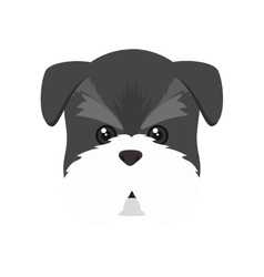 schnauzer dog cartoon vector image