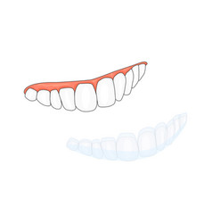 Teeth and invisalign braces isolated on white vector