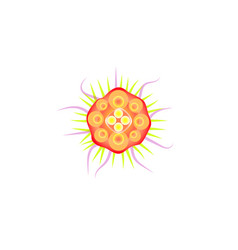 Virus abstract flat icon orange bacteria with vector