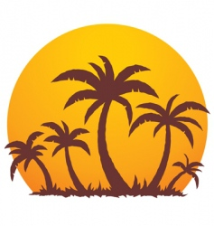palm trees and summer sunset vector image